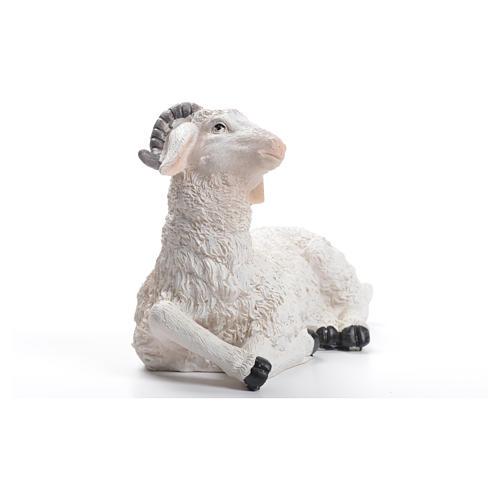 Sheep nativity figurine in resin 30/40cm 2
