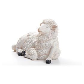 Sheep for nativity scene in resin 50cm s2