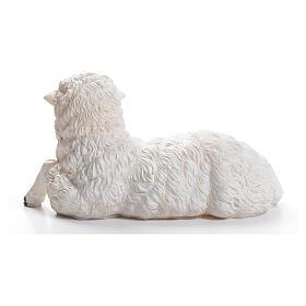 Sheep for nativity scene in resin 50cm s3