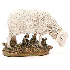 Sheep looking down in painted resin, 12cm Martino Landi Nativity s2
