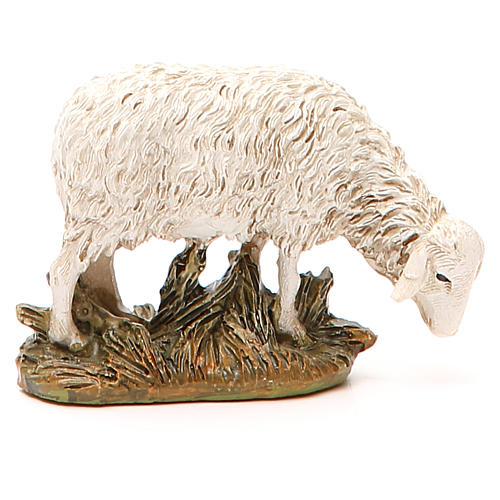 Sheep looking down in painted resin, 12cm Martino Landi Nativity 2