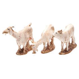 Animais 3 peças para Presépio Moranduzzo com figuras de altura média 10 cm s1
