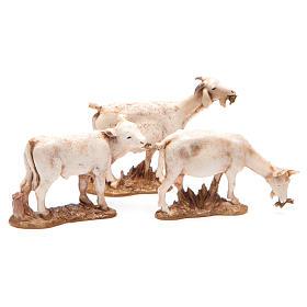 Animais 3 peças para Presépio Moranduzzo com figuras de altura média 10 cm s2