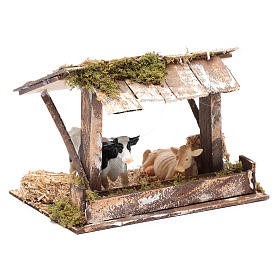 Cows in roofed barn for nativity scene s3
