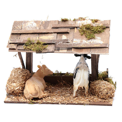 Cows in roofed barn for nativity scene 4