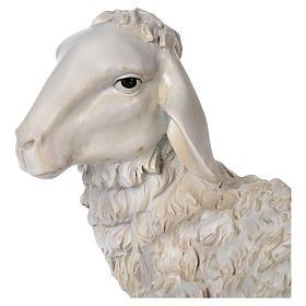 Ovelha sentada 28x14 cm resina para presépio com figuras de altura média 50-60 cm s2