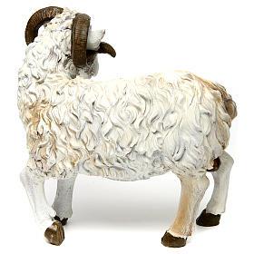 Ram in resin for 60 cm Nativity scene s2