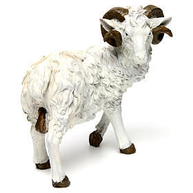 Ram in resin for 60 cm Nativity scene s3