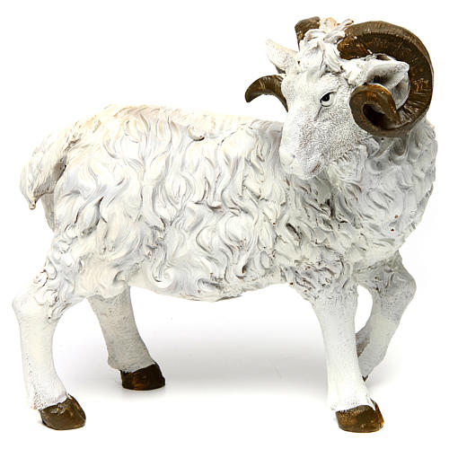 Ram in resin for 60 cm Nativity scene 1