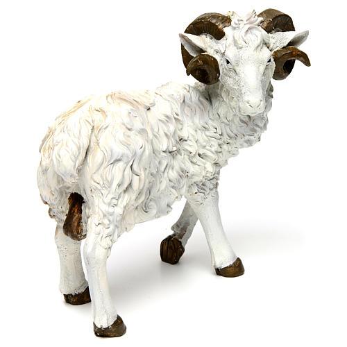 Ram in resin for 60 cm Nativity scene 3