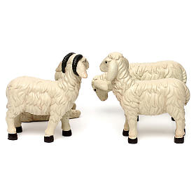 3 Sheep Set with ram, in colored resin for 25-30 cm nativity s5