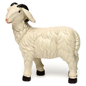 3 Sheep Set with ram, in colored resin for 25-30 cm nativity s6