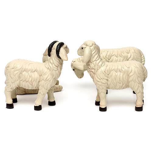 3 Sheep Set with ram, in colored resin for 25-30 cm nativity 5