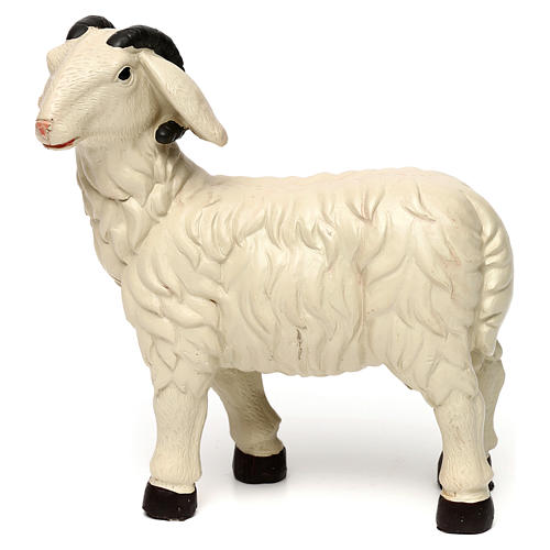 3 Sheep Set with ram, in colored resin for 25-30 cm nativity 6