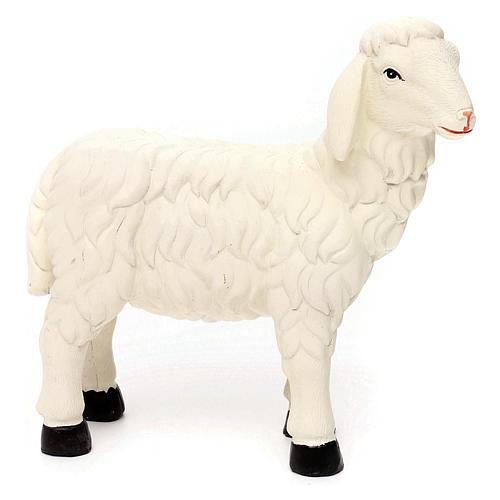 3 Pecore con ariete resina colorata per presepe 35-40 cm 4