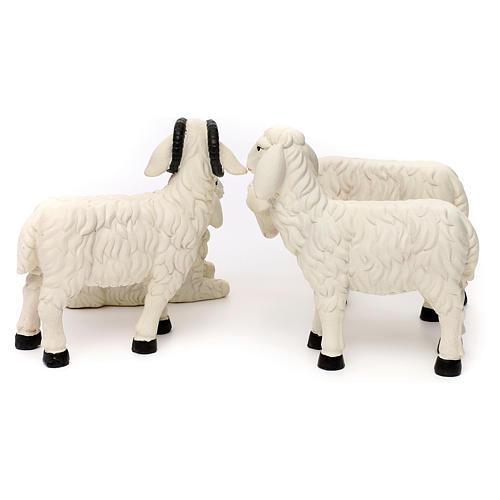 3 Owce z baranem żywica malowana do szopki 35-40 cm 6