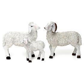 Set 5 Pecore e ariete resina colorata per presepe 25-30 cm s4