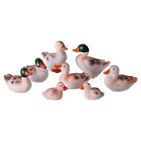 Set 8 Enten für Krippen 10/12cm s1