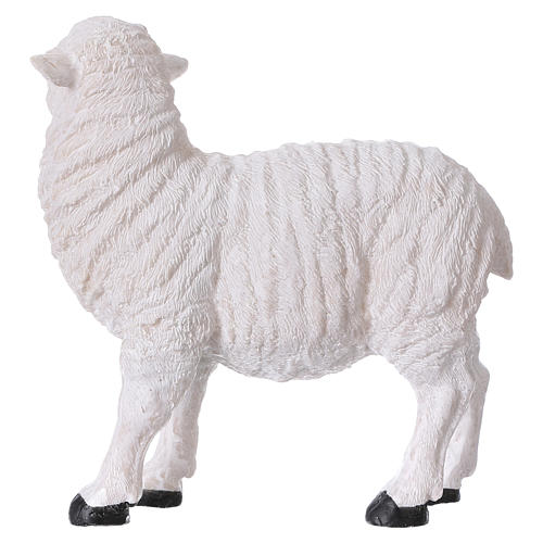 Set 2 sheep in resin for 35-45 cm nativity 4