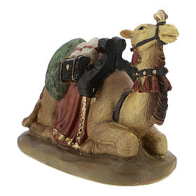 Set of 2 resin camels for Nativity scenes of 11 cm s3