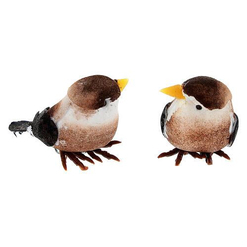 Oiseau coloré bricolage crèche 8 cm 4