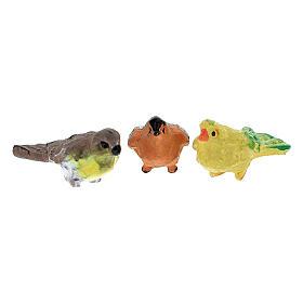 Oiseaux colorés 12 pcs h réelle 2 cm crèche 4-8 cm s3