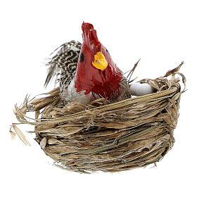 Gallina con nido y huevos belén 10-12 cm s3