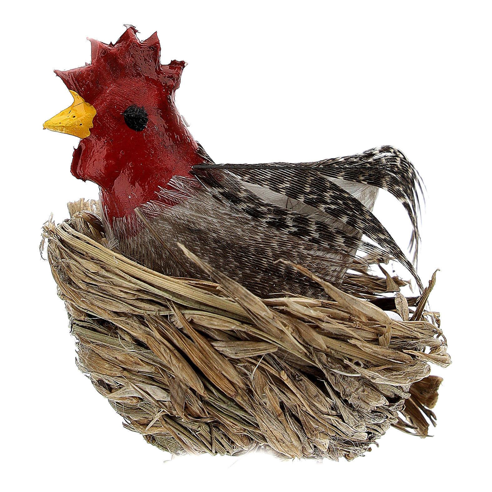 Gallina con nido e uova presepe 10-12 cm 3
