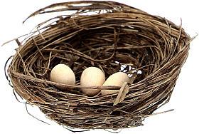 2 Pajaritos coloreados con nido y huevos belén 10 cm s3