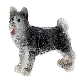 Dog 3 cm for Nativity scene 4-6 cm s1