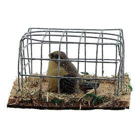 Vogel in Käfig aus Harz für Krippe verschiedene Modelle, 8-10-12 cm s1