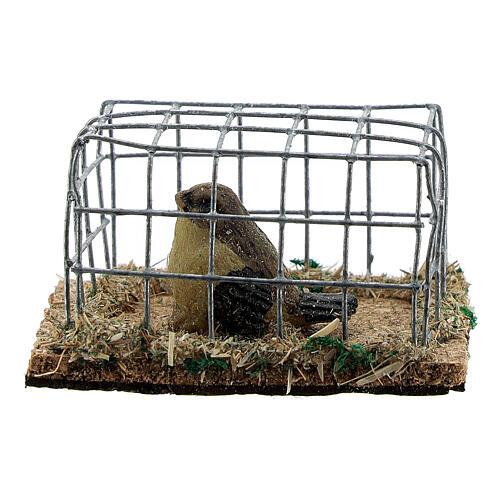 Vogel in Käfig aus Harz für Krippe verschiedene Modelle, 8-10-12 cm 1