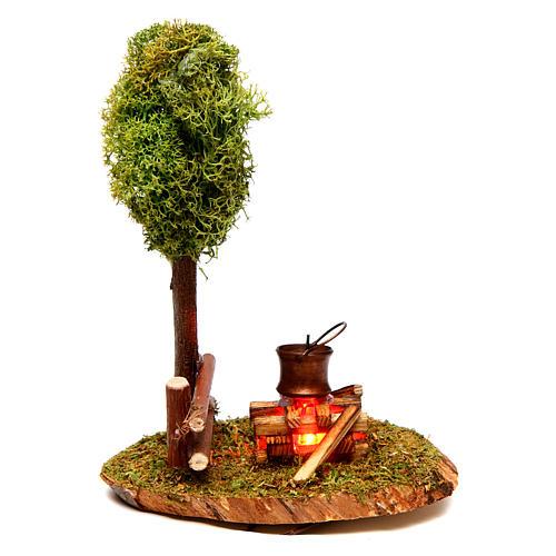 Scena bivacco e albero di lichene 1