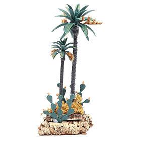 Musgo, líquenes, plantas.: Palma y cacto h. 20 cm pvc