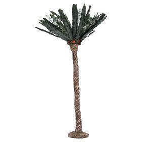 Palm for nativity scene in resin, 80cm s1