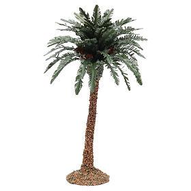 Palmier simple pour crèche h réelle 25 cm résine s1