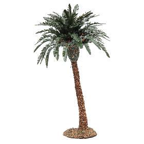Palmier simple pour crèche h réelle 25 cm résine s2