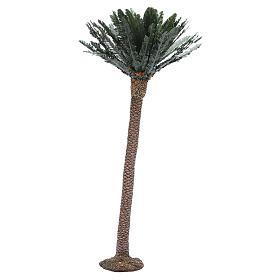 Single palm for nativity scene in resin measuring 65cm s1