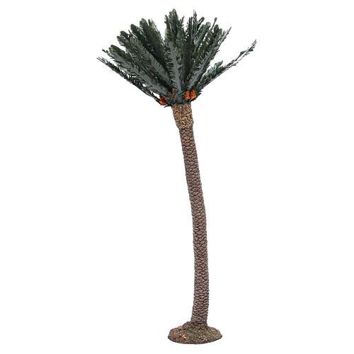 Single palm for nativity scene in resin measuring 65cm 2