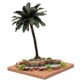 Palma presepe con laghetto 35x18x18 s2
