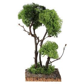 Mousse végétale, Lichens, Arbres, Pavages: Arbre avec lichen sur rocher 13x8x8 cm