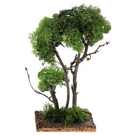 Arbre avec lichen sur rocher 13x8x8 cm s4