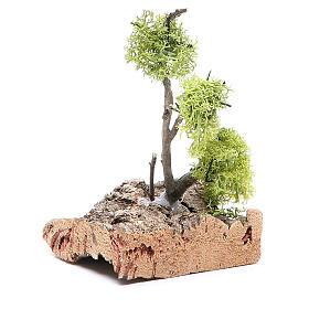 Albero con lichene su roccia 13x8x8 s2