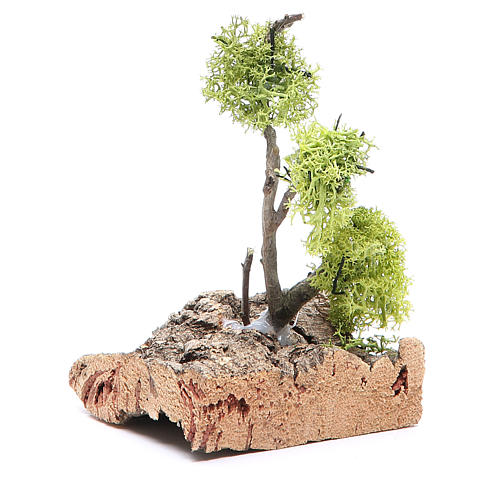 Albero con lichene su roccia 13x8x8 2