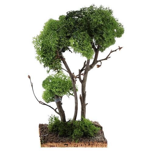 Árvore com líquen na rocha 13x8x8 cm 4