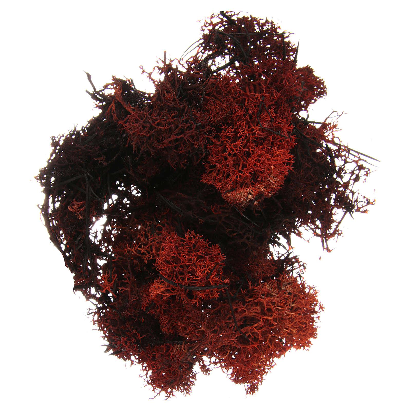 Muschio lichene marrone per presepe 100 gr 4