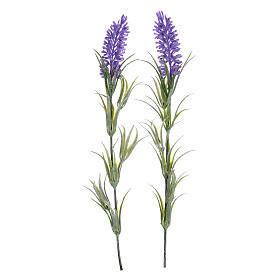 Nativity scene lavander flowers s1