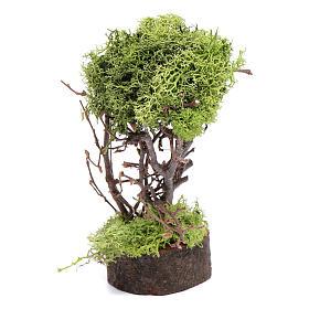 Arbre de lichen pour crèche h 15 cm s1