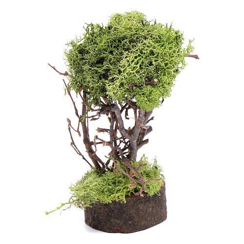 Arbre de lichen pour crèche h 15 cm 1