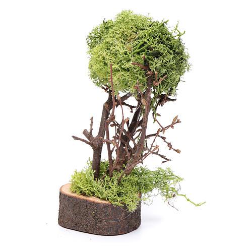 Arbre de lichen pour crèche h 15 cm 2